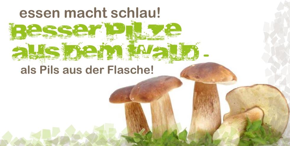 Flyer_SCHULESSEN004 Kopie